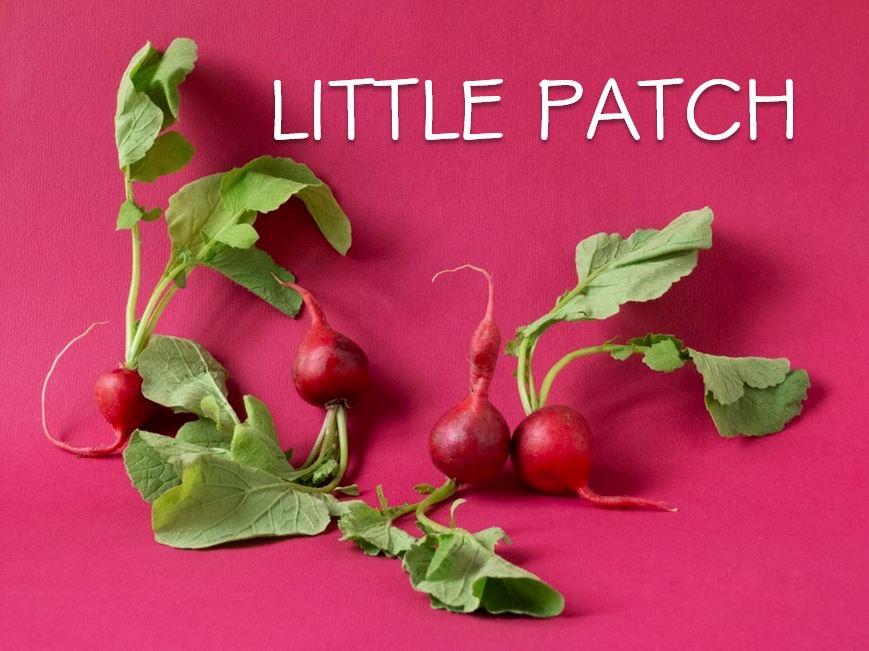 Little Patch